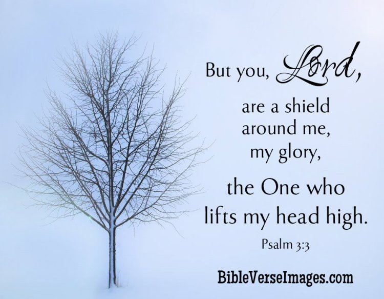 But you, O LORD, are a shield around me